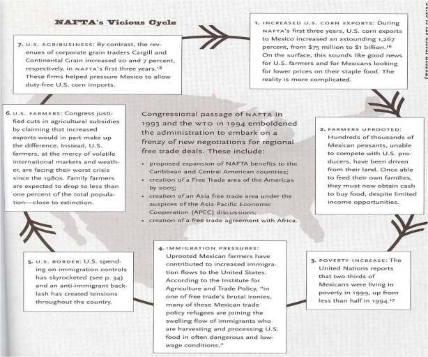 NAFTA_s Vicious Cycle